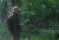 Puszcza-o-świcie, fotografia, poranek-w-Puszczy-Białowieskiej, obserwacje-zwierząt