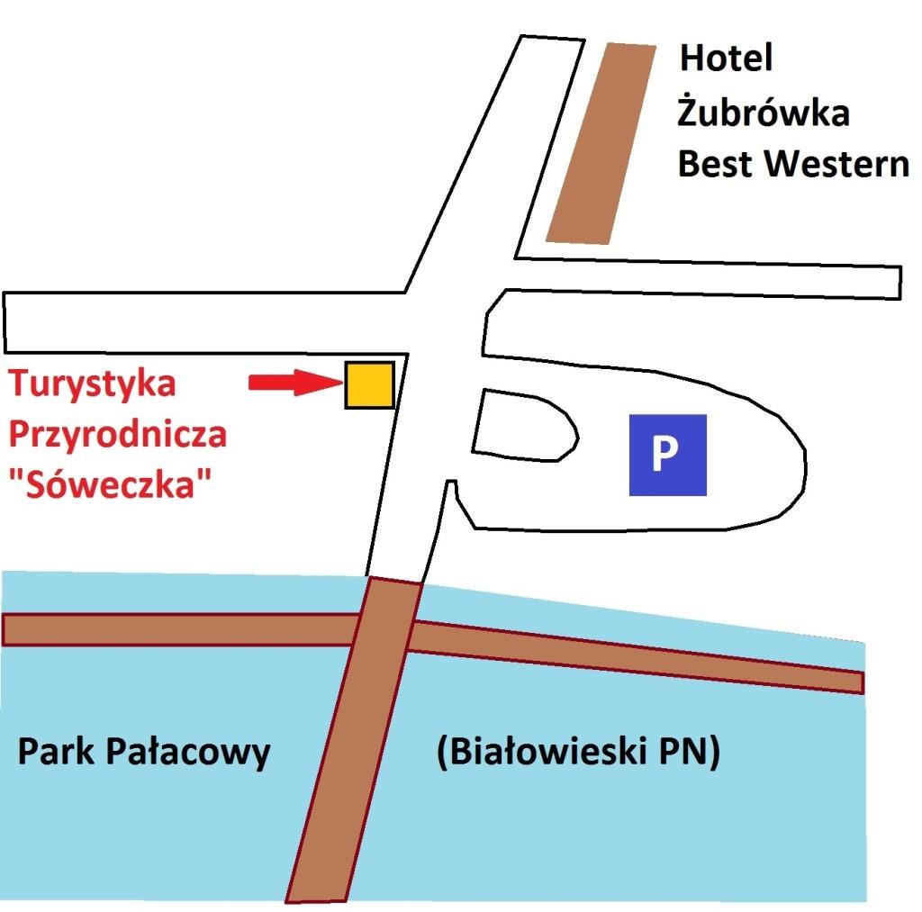 """Lokalizacja biura """"Sóweczka"""" w Białowieży"""